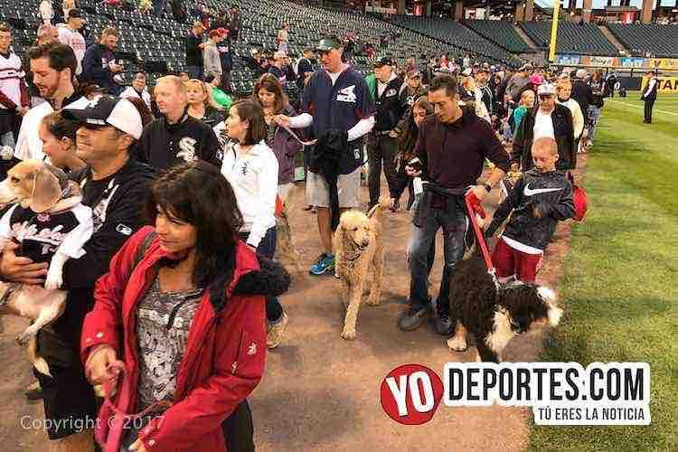 White Sox Dog Day-chicago