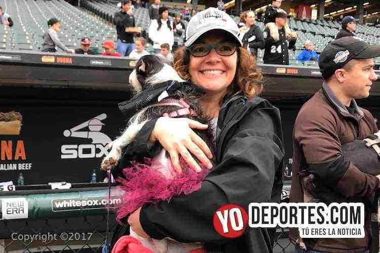 White Sox Dog Day-dia del perro